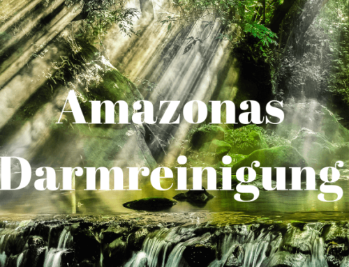 Amazonas Darmreinigung – So geht Darmsanierung