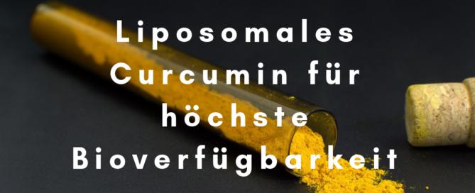 Liposomales Curcumin als Medizin, Arzneistoff