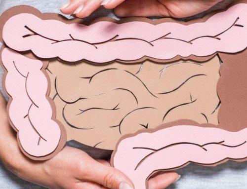 Darmaufbau nach Antibiose – 3 Schritte zur Darmsanierung