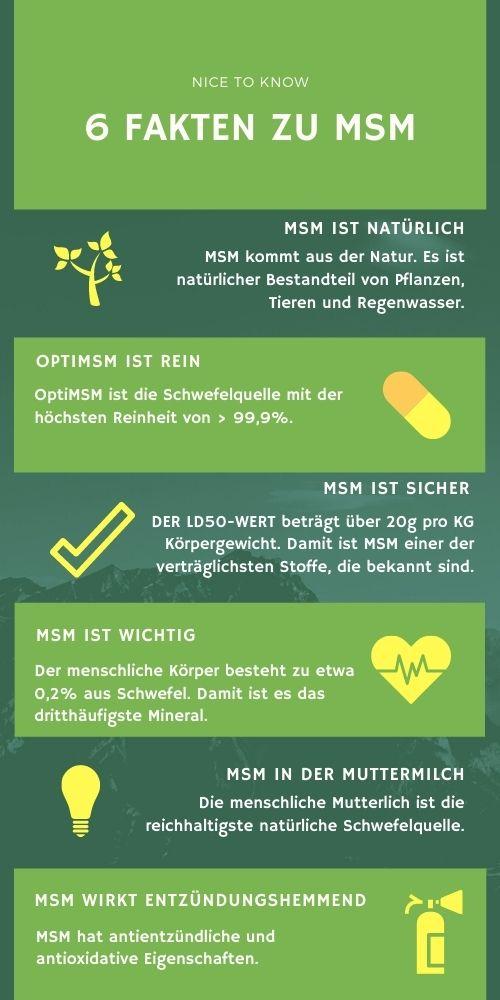6 Fakten zu MSM