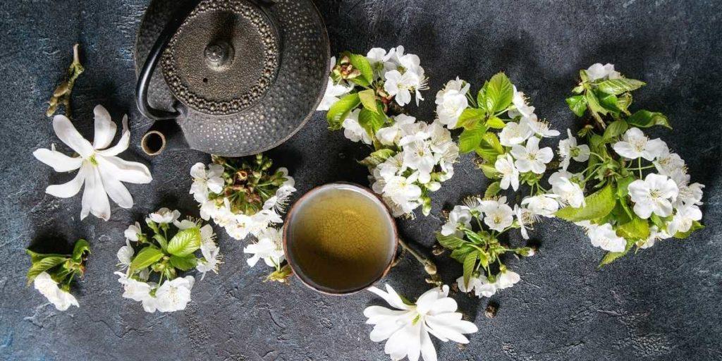 Tee lindert Menstruationsbeschwerden
