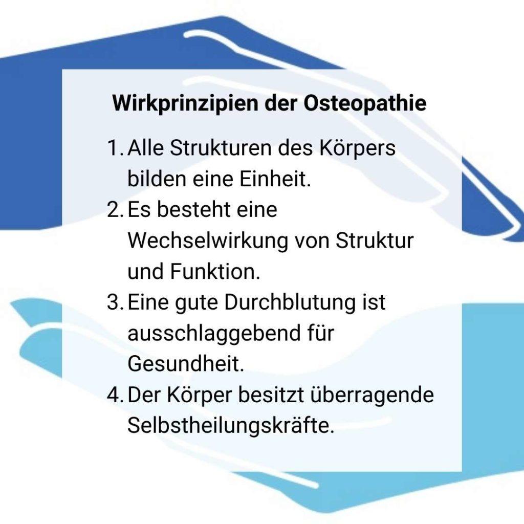 4 Grundpfeiler der Osteopathie